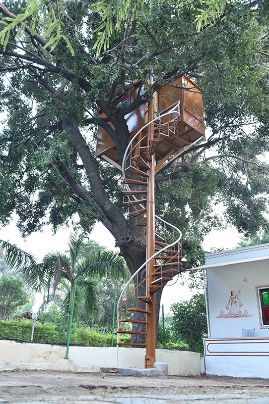 Hotel Burja Haveli, Alwar, Rajasthan - Tree House